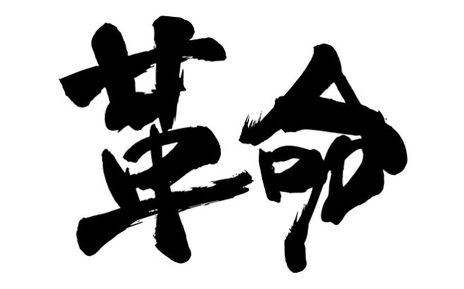 【革命】コンサル生ギンコさんがネトナンで初ゲット!